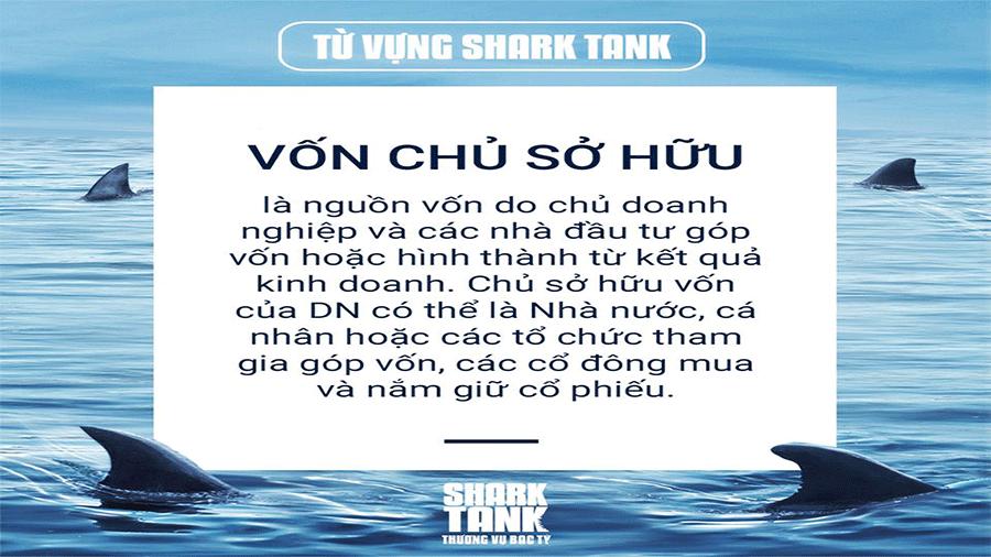 tu-vung-shark-tank-von-chu-von-chu-so-huu-nguon-von-chu-so-huu-la-gi